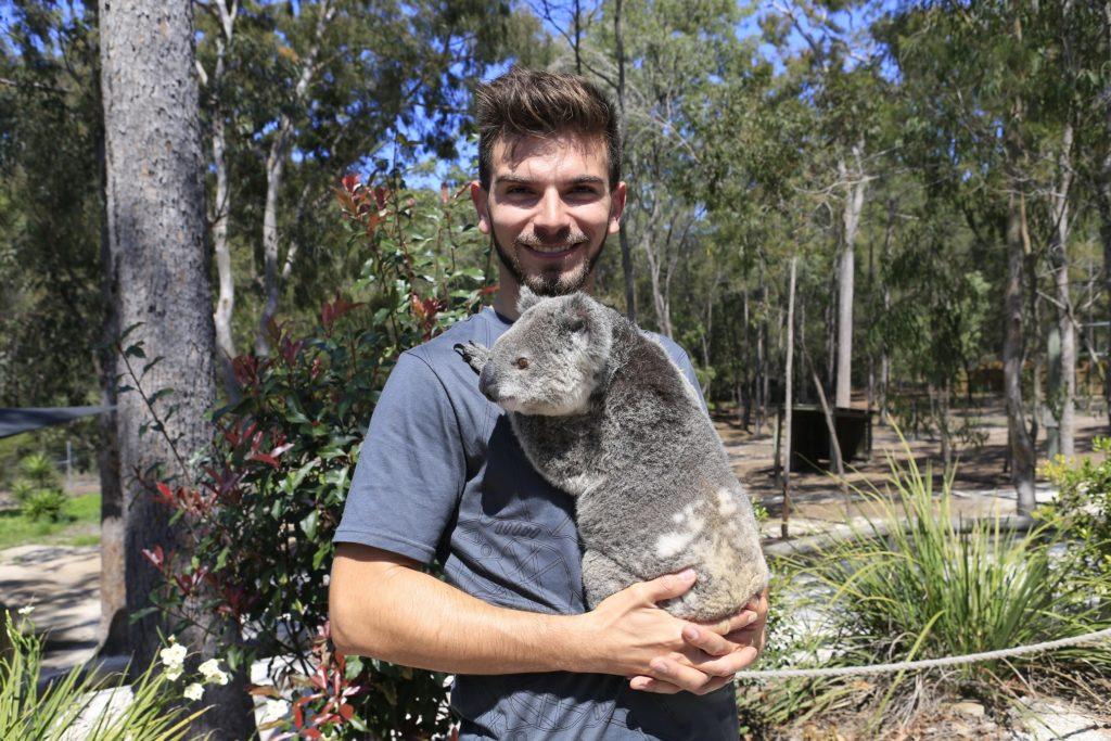 12-time French Champion Anthony Abbasse with a native koala at Paradise Country (Pic: Coopers Photography)